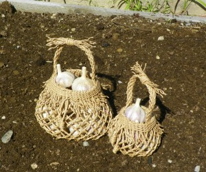 garlic baskets