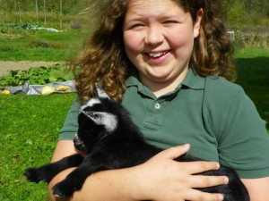 hannah in love with baby lambs