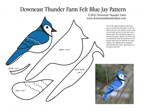 bluejay template how to create