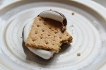 A half eaten Nutella S'more