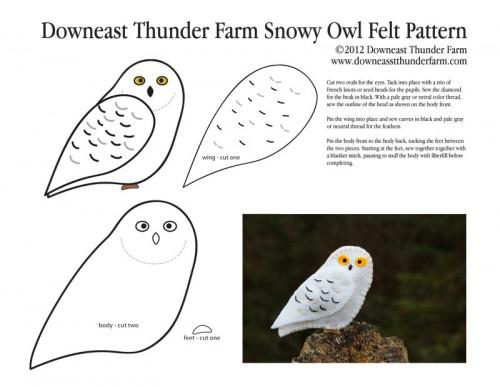 Downeast Thunder Farm Snowy Owl | Downeast Thunder Farm