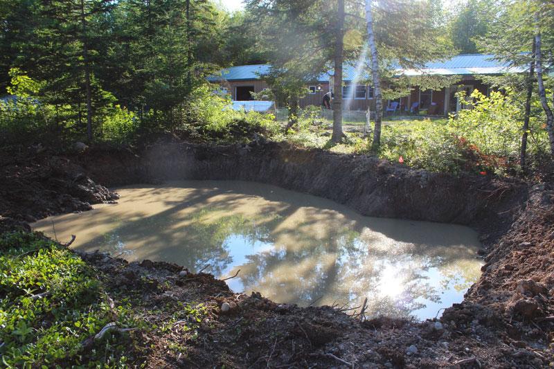 Pond Progress