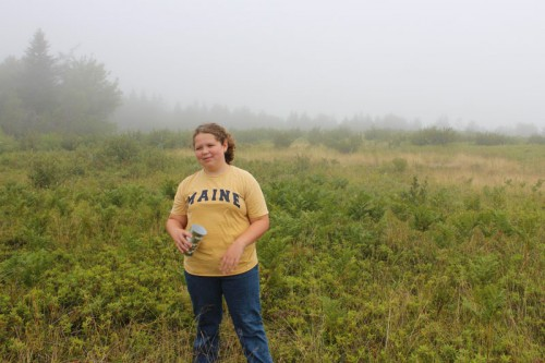 picking blueberries in the mist