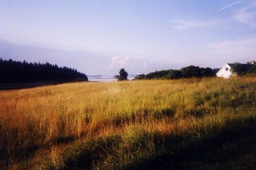 Isle au Haut by Hannah Bennett