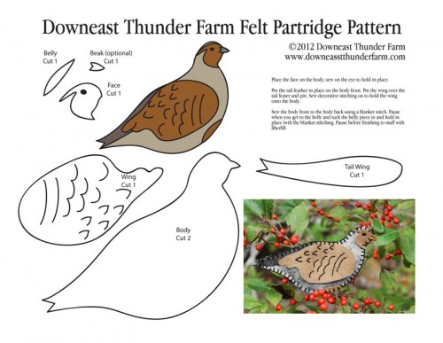 Partridge Pattern