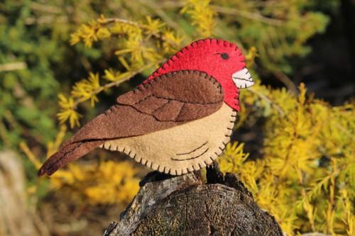 Friendly house finch felt ornament