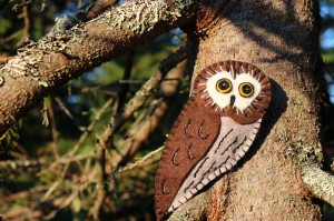 Northern Saw-whet Owl Felt Ornament