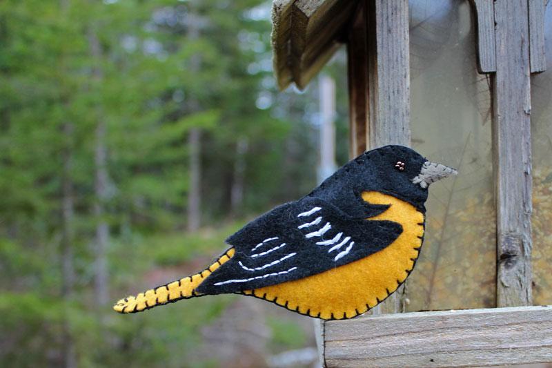 susan s bird patterns downeast thunder farm