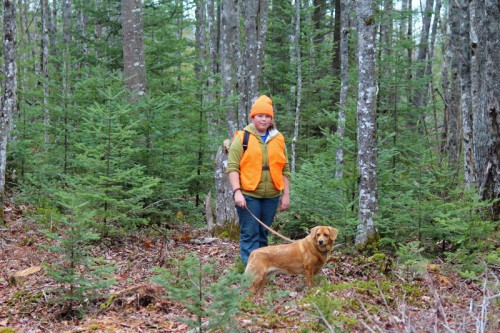 A walk in the woods during hunting season