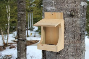downeast thunder farm birdfeeder
