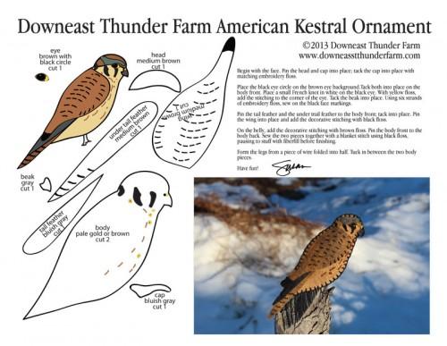 American Kestrel Pattern