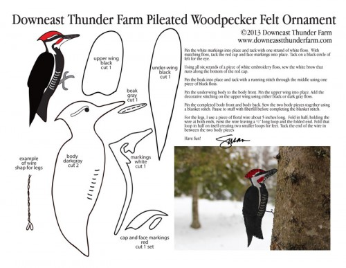pileated-woodpecker-pic