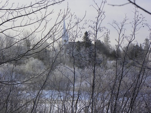 frosty-morning-008