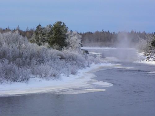 frosty-morning-036