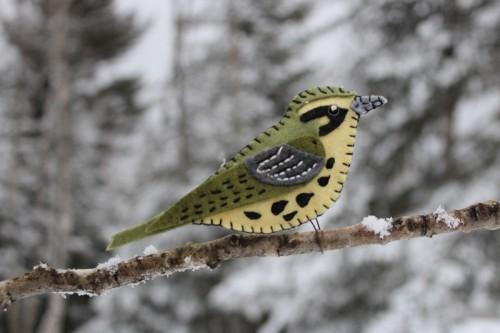 prairie-warbler