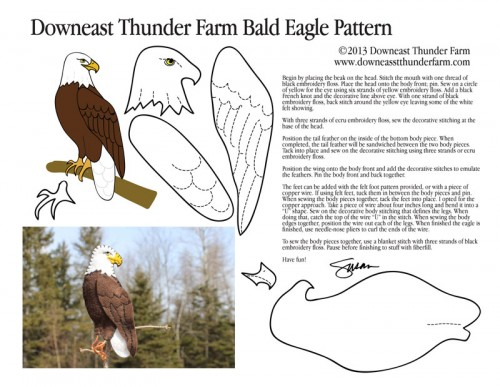bald-eagle-pic