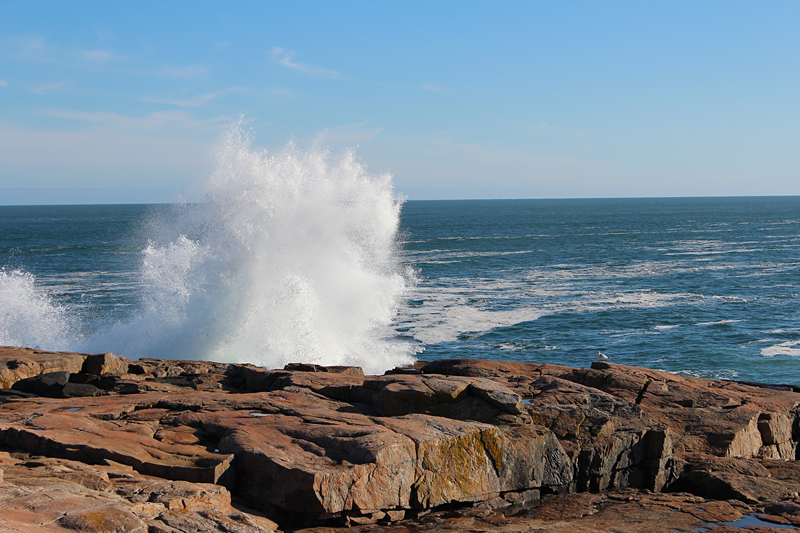 Late Winter Drive Around Schoodic Point