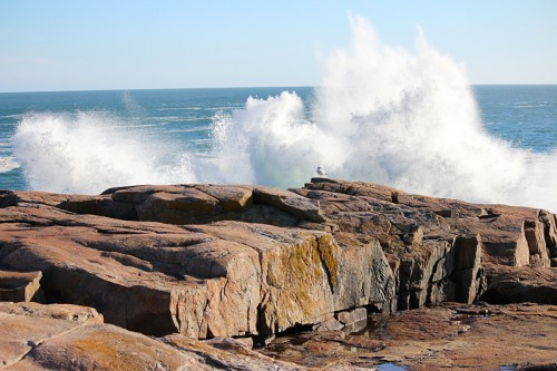 Afternoon drive through Schoodic Point / Acadia National Park