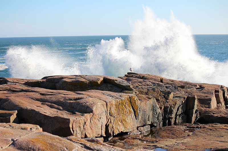 Late Winter Drive Around Schoodic Point Downeast Thunder