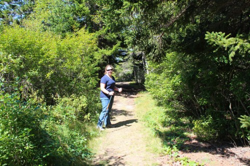 The Alder Trail at Schoodic