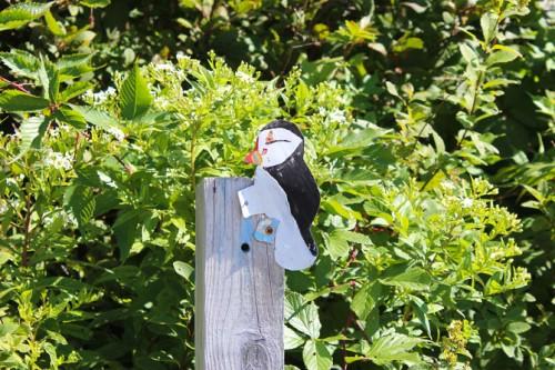 Puffin trail marker