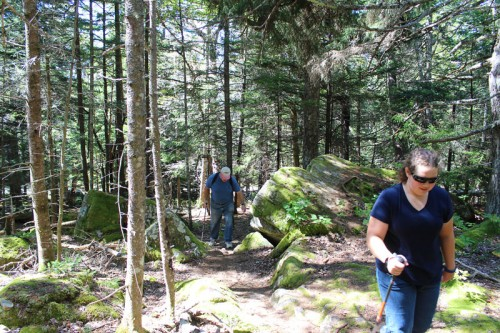 Schoodic Head Trail