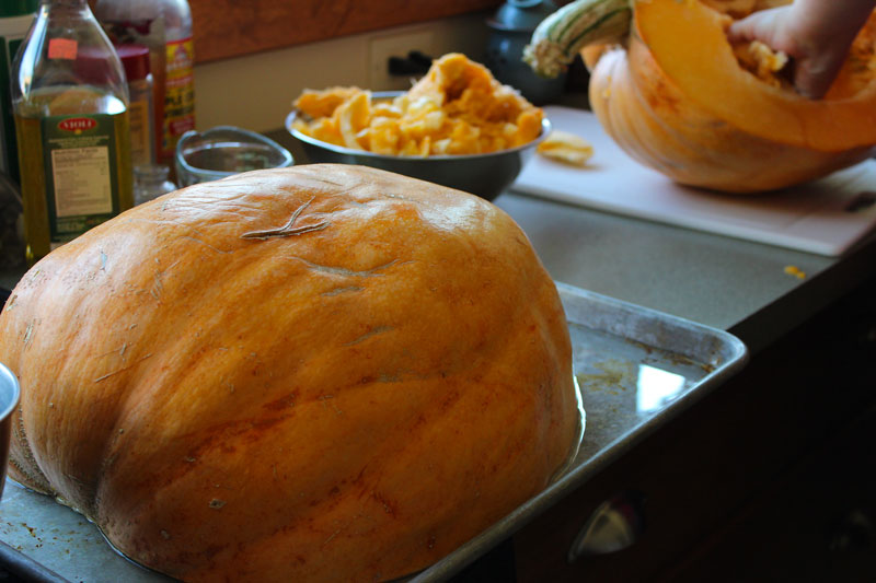 Cooking With Giant Pumpkin