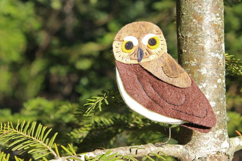 The Tiny Elf Owl