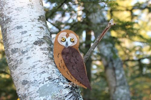 Short-eared owl pattern