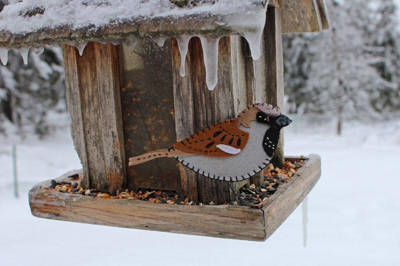 Happy House Sparrow