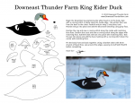 King Eider Duck Pattern