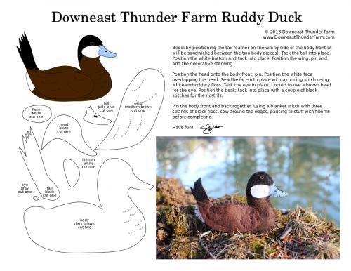 ruddy duck pattern