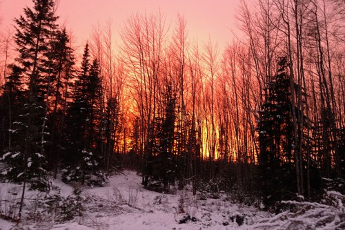 january winter sunset