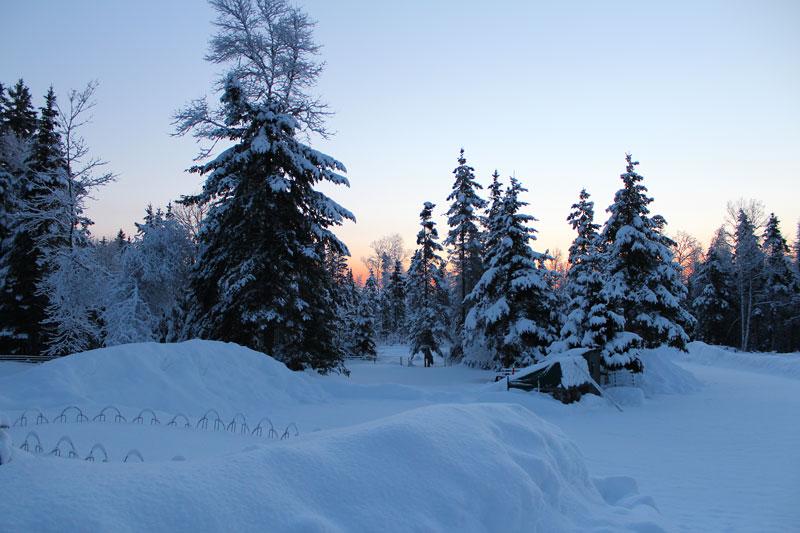 Snowy Sunrise Surprise