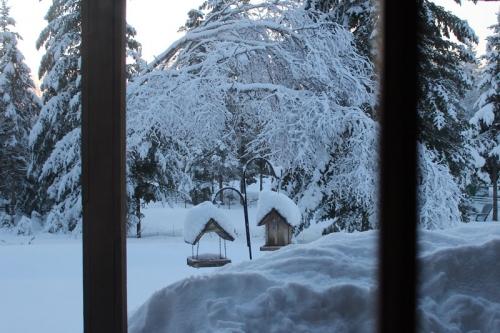 more-snow-019