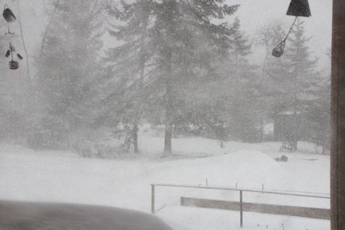 snow-074