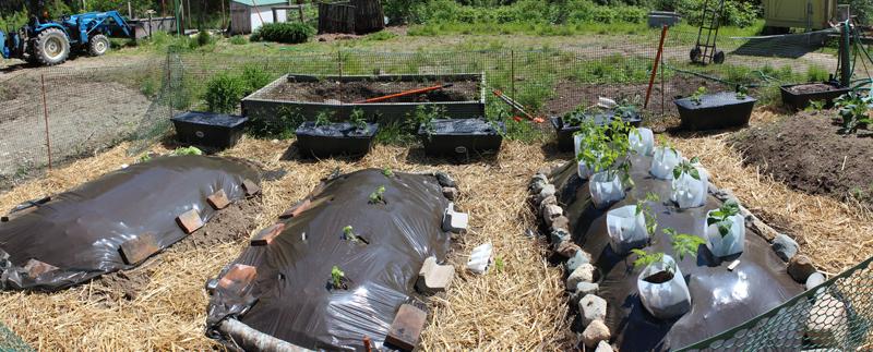 My New Garden Strategy: Hugelkulture