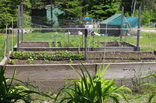 garden-010