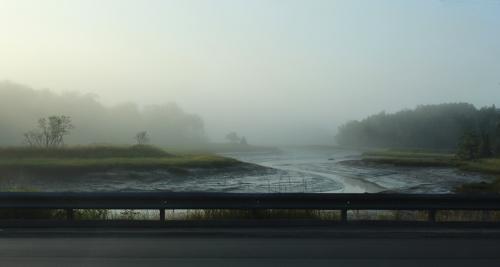 foggy Mill River