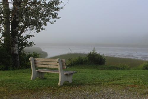 solitude on the pleasant river