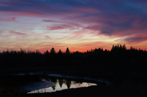 november maine sunset