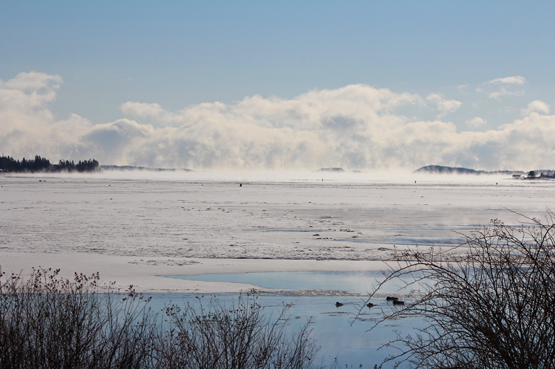 Where Sea Smoke Meets the Clouds