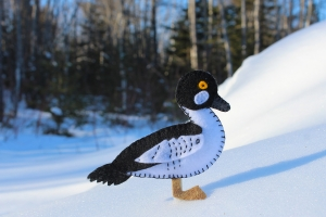 goldeneye duck pattern