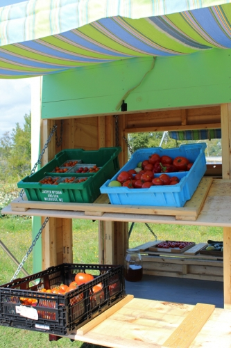 fresh produce on the IEM mobile veggie cart