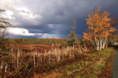 storm over the corea heath