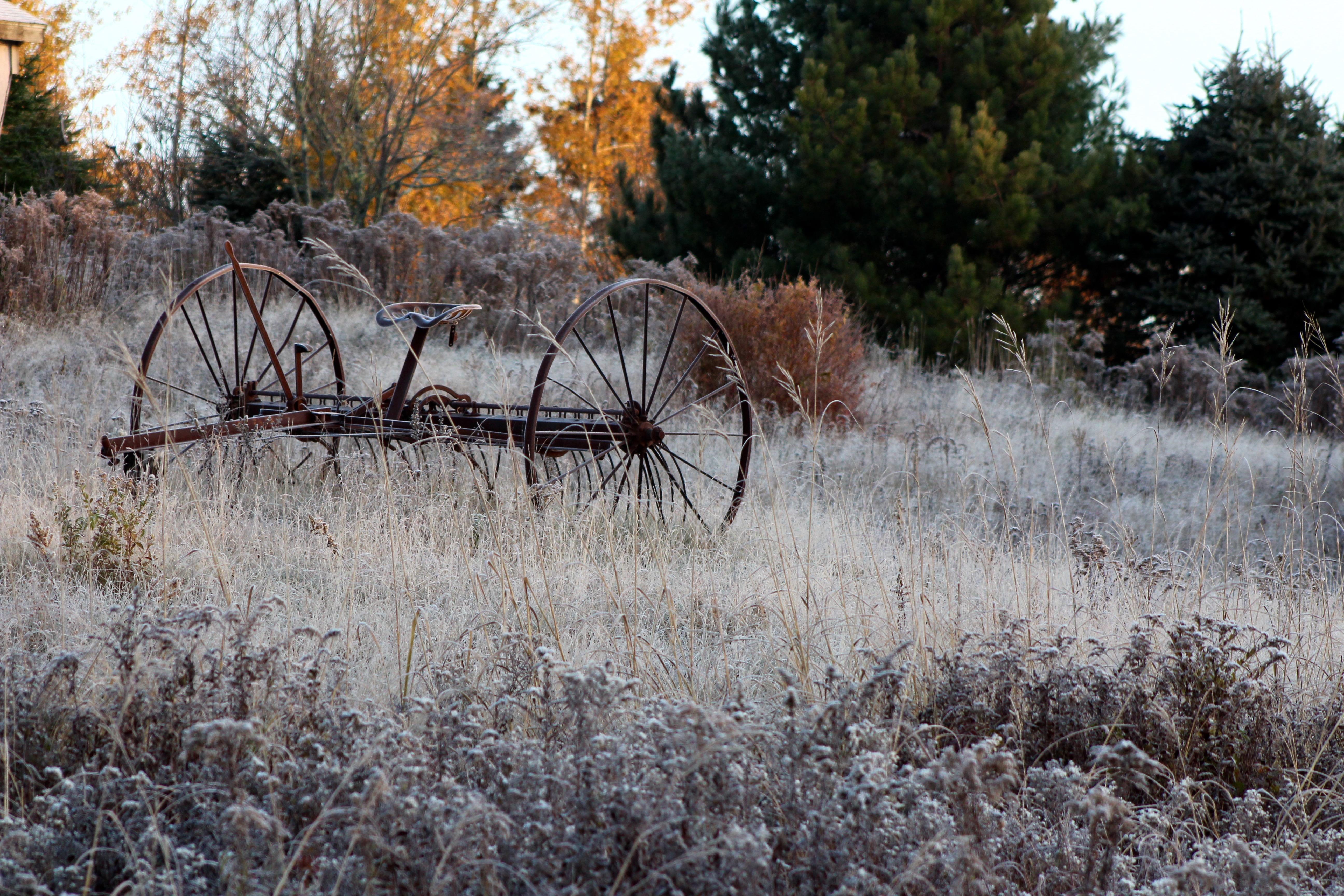 Frosty Morning Warnings