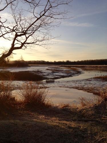 sunrise on the pleasant river in addison