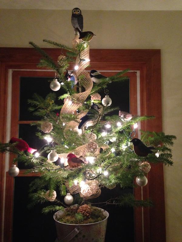 Maine Backyard Bird Christmas Tree
