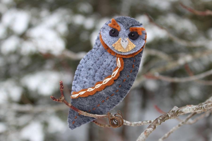 The Fun Flammulated Owl