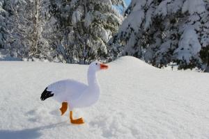snow goose felt pattern